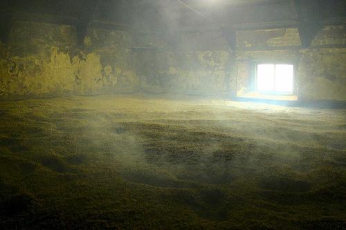 smoke dry barley.jpg
