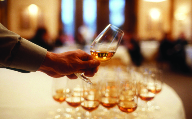 whisky many.jpg